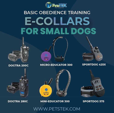 Remote Training Collars for Small Dogs