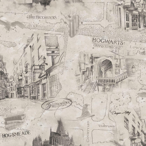 Harry Potter Map Peel & Stick Wallpaper - EonShoppee