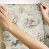 Harry Potter Map Peel & Stick Wallpaper