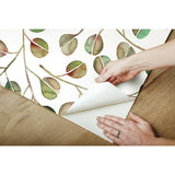 Cat Coquillette Eucalyptus Peel & Stick Wallpaper - EonShoppee