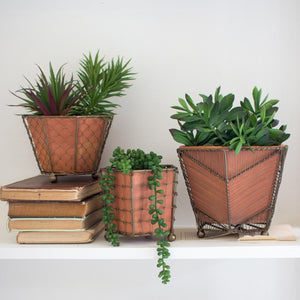 Set of 5 Teracotta Planters With Wire Wrap