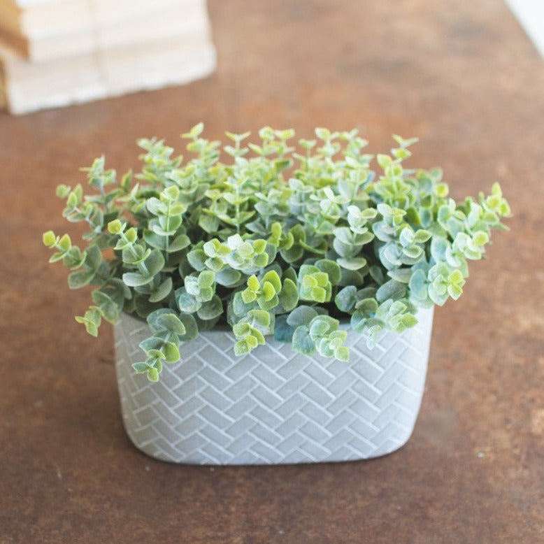 artificial eucalyptus plant in cement pot | faux floral | shop A Dash of Casual home decor and gift items online or in store | Located inside the Corner Cartel in Boerne | best boerne shops for home decor vintage items accessories and gifts