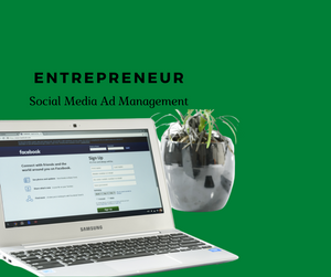 [Entrepreneur Package] - Social Media Ad Management ($1000/mo)