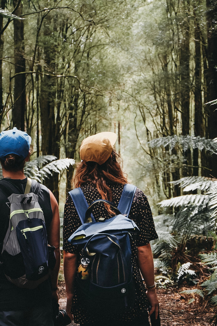 Two male friends walk through the forest on Hike & Seek 12 Apostles, Otways & Great Ocean Road day tour