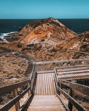 Cape Schanch boardwalk Hike & Seek day tours