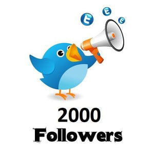 2,000 Twitter Followers