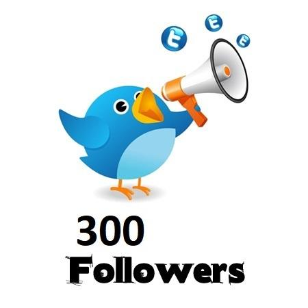 300 Twitter Followers