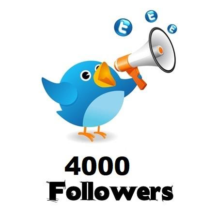 4,000 Twitter Followers