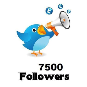 7,500 Twitter Followers