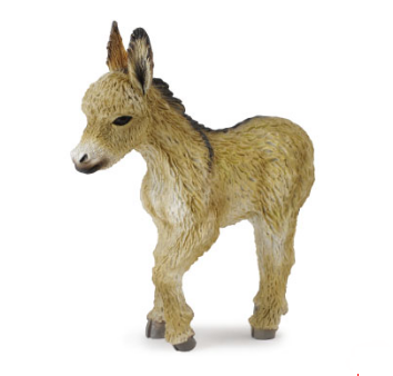 Donkey Foal Walking - Collecta