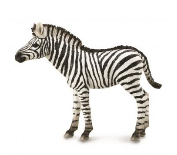 Zebra Foal - Collecta