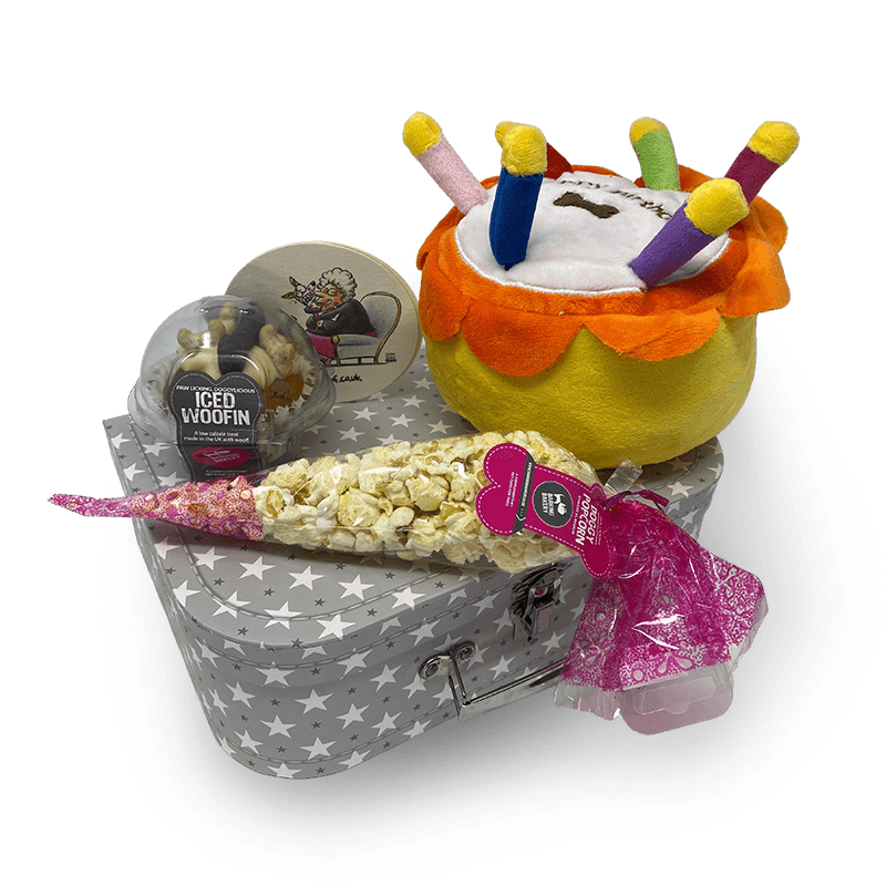 Cake and More - Birthday Gift Box for Dogs