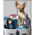 Load image into Gallery viewer, Puppy Gift Box – Welcome Present for Boys