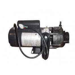 4hp 2 Speed Sta-Rite - Pentair Pump