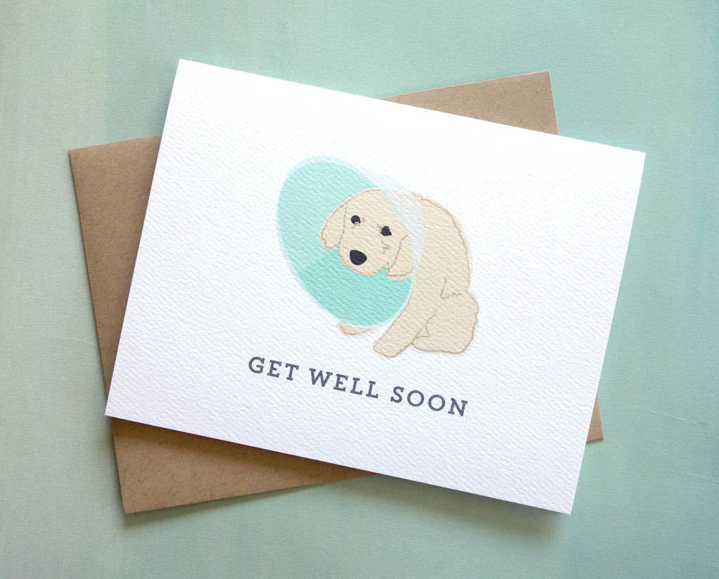 dog cone of shame puppy get well card pennie post