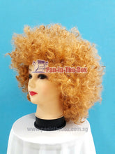 Load image into Gallery viewer, Short Blonde Afro Wig