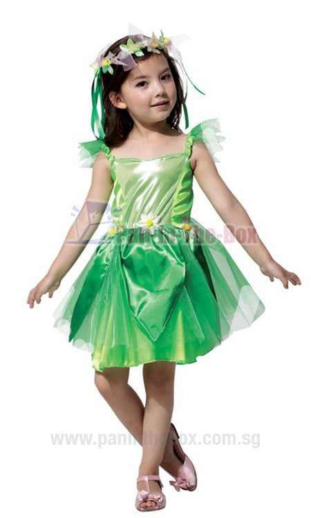 Green Fairy Kids Costume