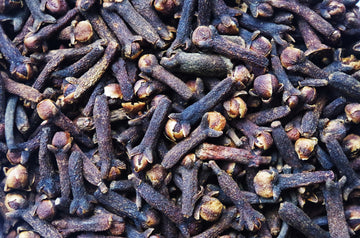 Essential Oil of the Month: Clove