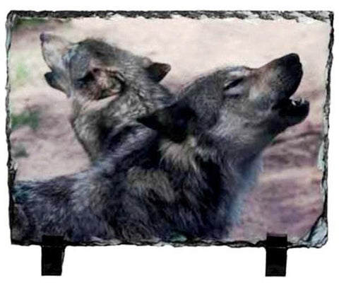 Two Wolves Photo Slate