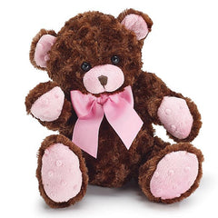 Brown & Pink Plush Teddy Bear