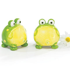 Toby the Toad Frog Salt and Pepper Shaker Set