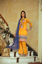 Load image into Gallery viewer, Arasteh Emb Printed Lawn 3 Piece