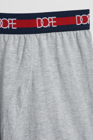 DOPE Logo Boxer Briefs #Heather Grey
