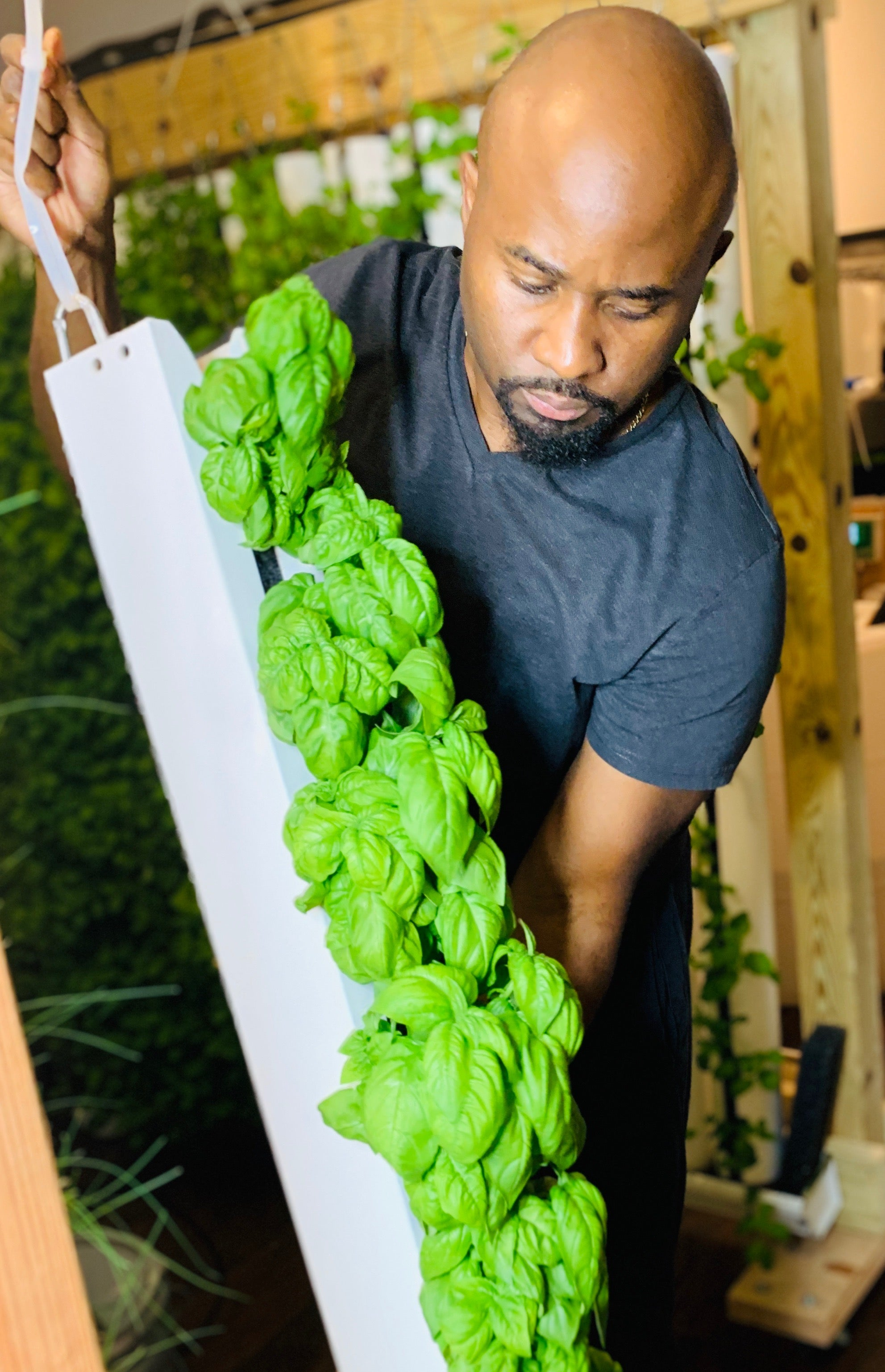 Richmond Biz Sense Article - New Urban Farm Venture Sprouts in Richmond