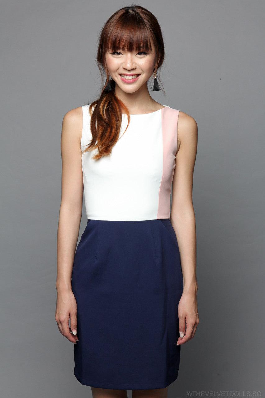 Colorpop Shift Dress in Navy/Pink