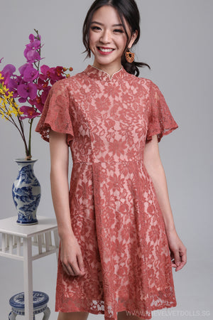 Peace & Harmony Lace Dress in Tea Rose
