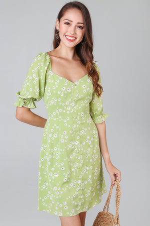 Daisy Sweetheart Dress in Apple Green