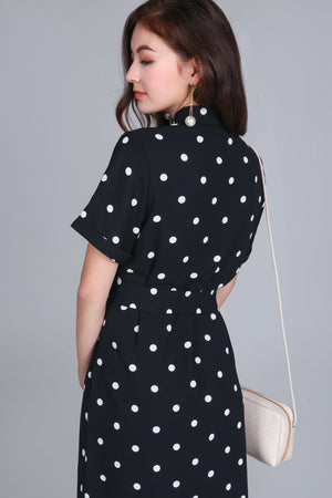 Alvina Shirt Dress in Polka Dot
