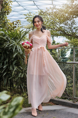 Clair De Lune Maxi Dress in Blush Peach