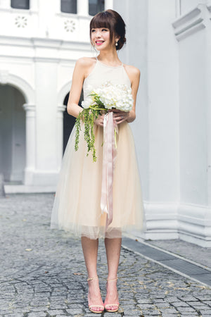 Midsummer's Night Tulle Dress In Nude