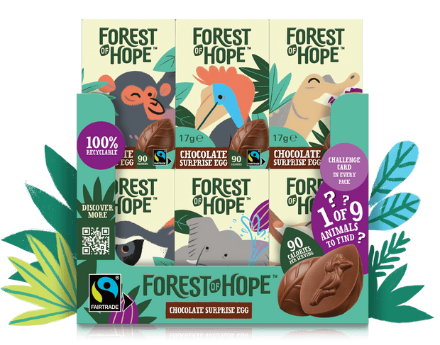 DISCOVER FOREST OF HOPE WITH A MIXED CASE OF CHOCOLATE SURPRISE EGGS