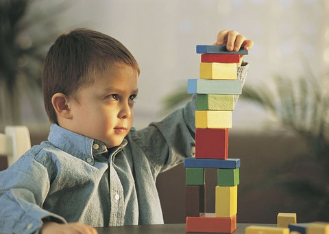 building blocks montessori activity for 2 year olds