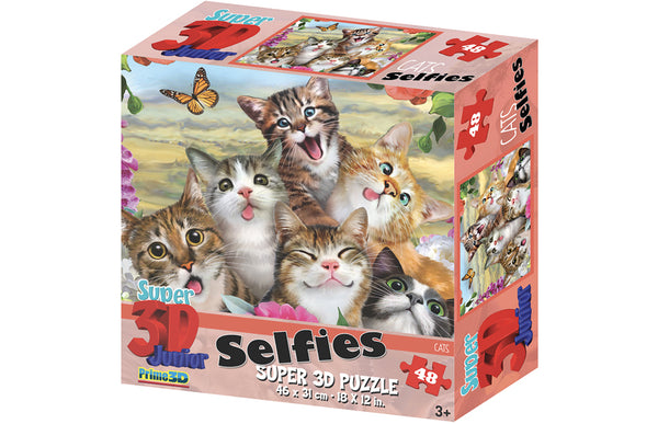 HR Selfie Cats 48pc