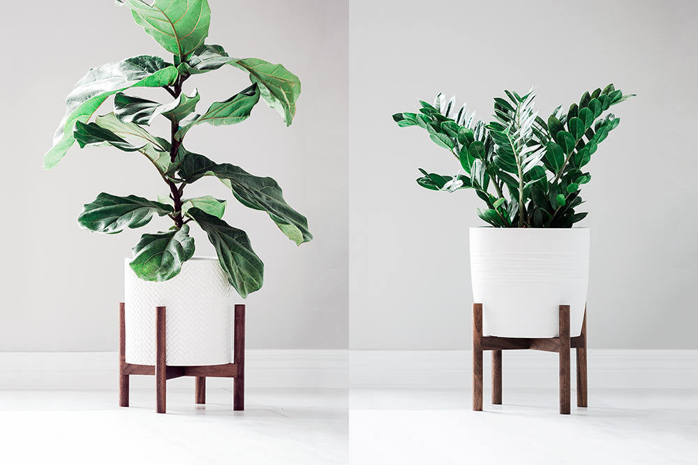 Mid Century Modern Plant Stand with Short Round Legs