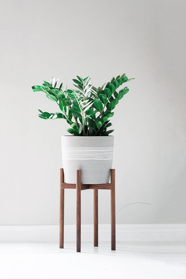 Mid Century Modern Plant Stand with Higher Elevation