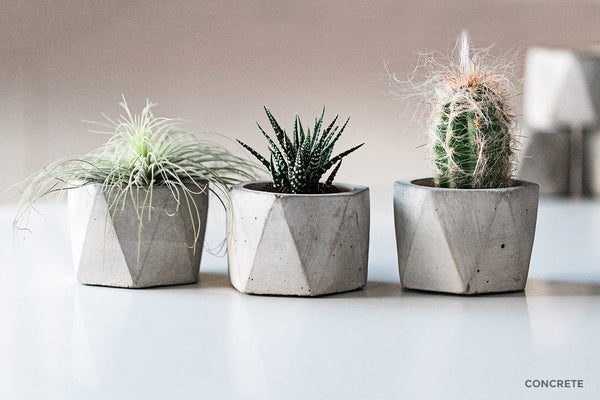 Geometric Air Plant / Succulent Pots - Set of 3 - Concrete - Ships Same Day