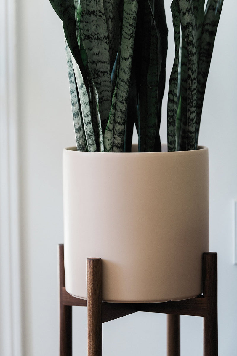 "Mid Century Modern Plant Stand with 10"" Matte Blush Ceramic Planter"