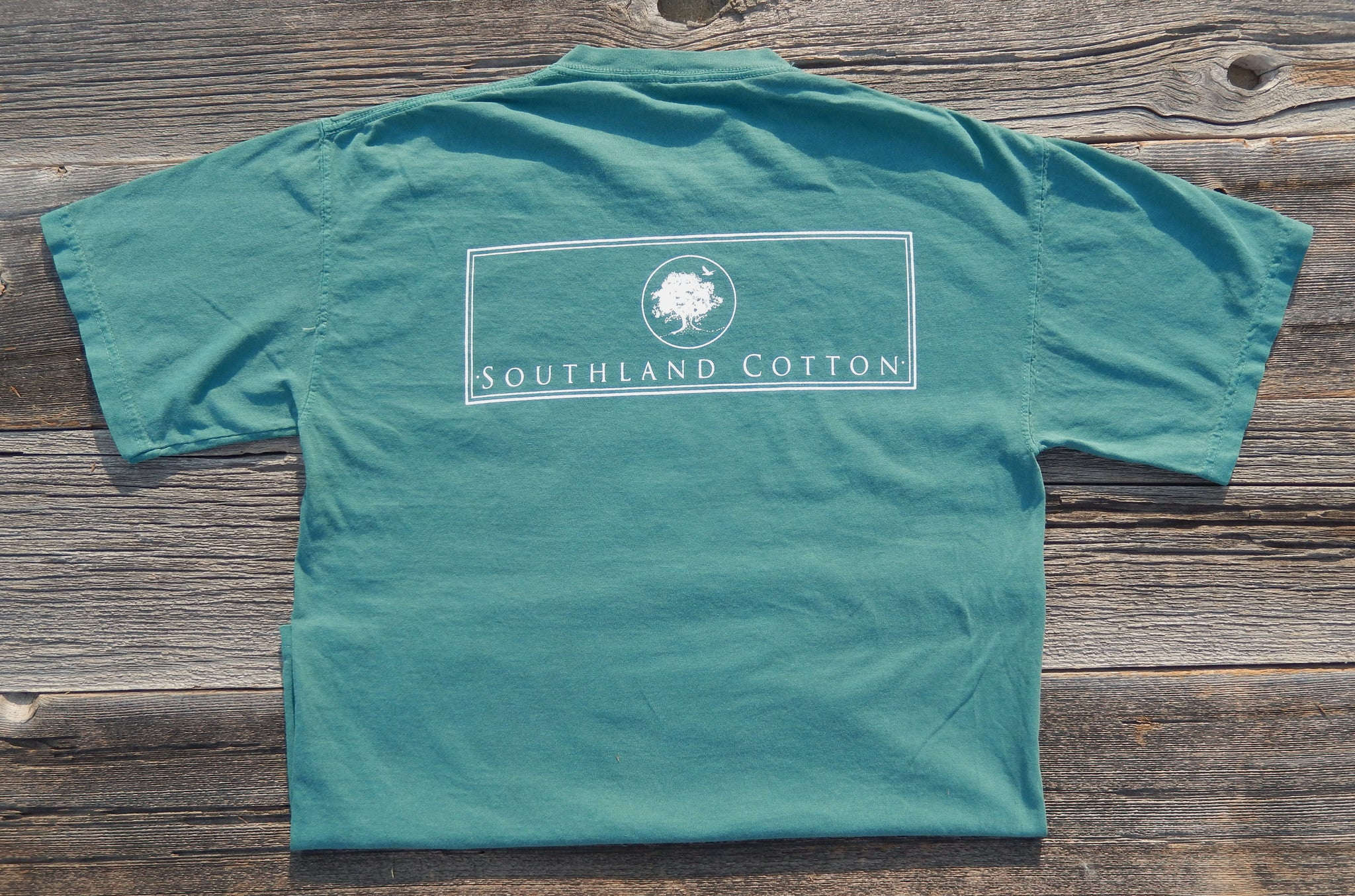 Short Sleeve Grass Green New Banner Shirt