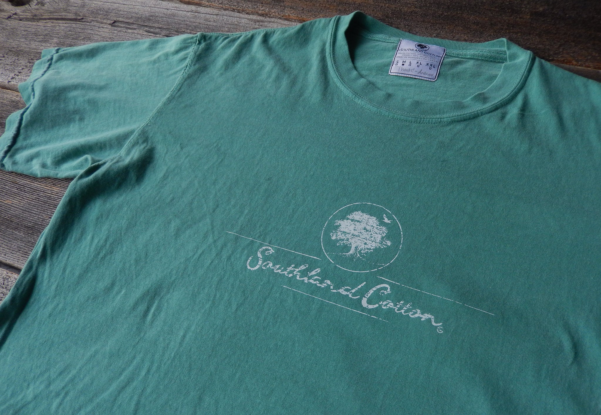 Short Sleeve Seafoam Distressed Logo Shirt