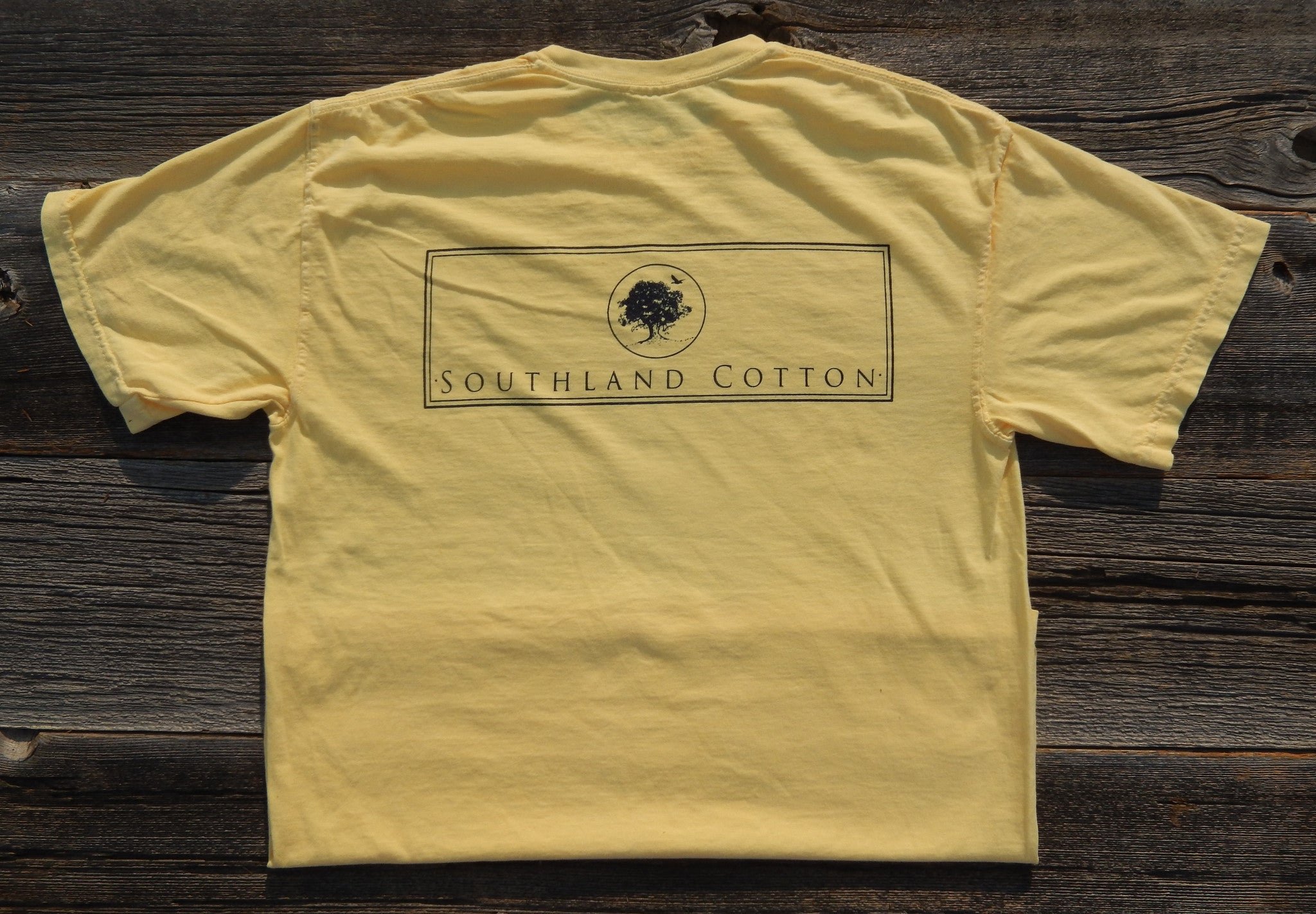 Short Sleeve Smooth Yellow New Banner Shirt