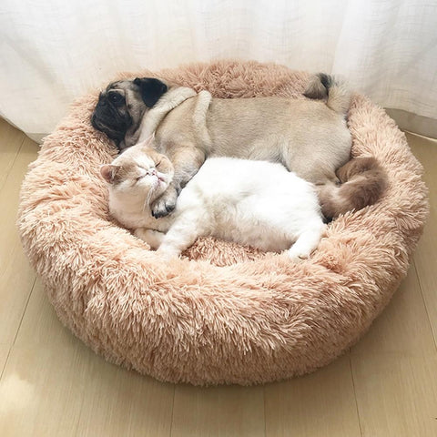 A pug and a cat lying in a round faux fur pet bed