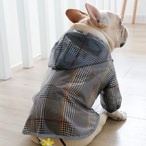 Sitting French bulldog wearing a rainjack, seen from the back