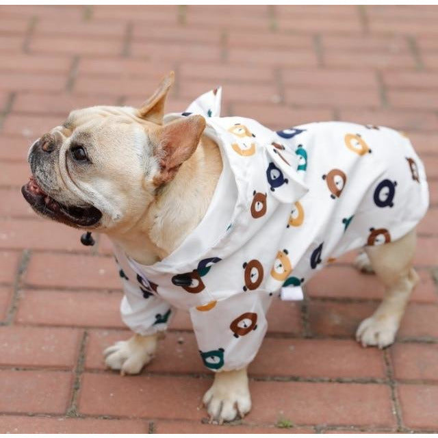 French bulldog wearing a rain jacket