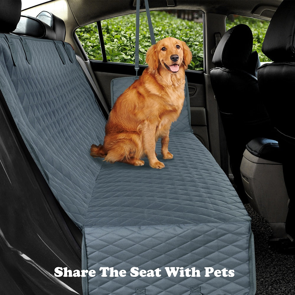 dog sitting on car seat protector in back seat of car