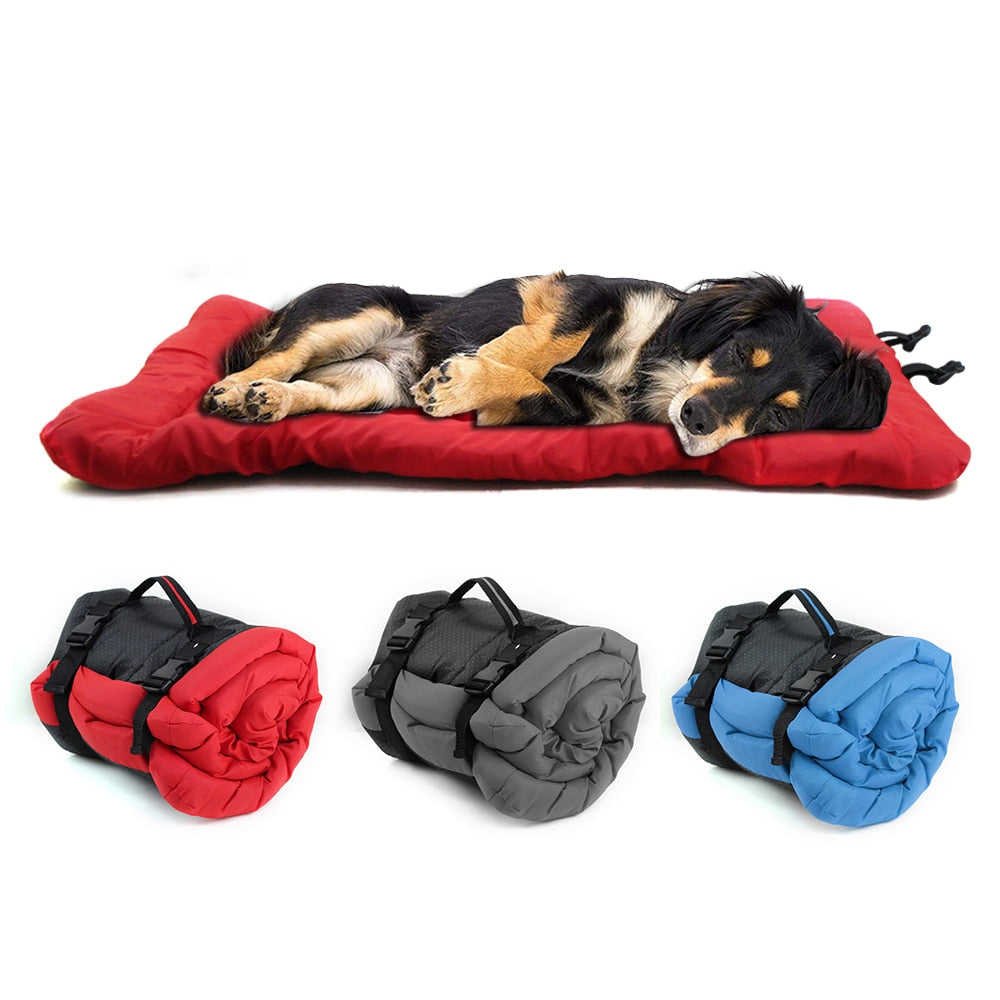 dog lying a red pet cushion with three rolled up varieties displayed below