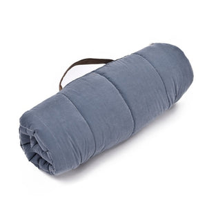 light blue pet mat, rolled up and easy for travelling